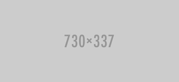 730×337